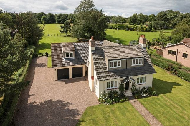Thumbnail Detached house for sale in Park Road, Swarland, Morpeth
