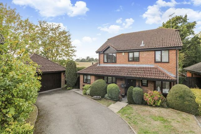 Thumbnail Detached house for sale in Hatch End, Windlesham