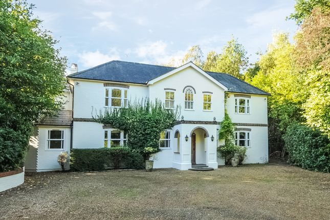 Thumbnail Detached house to rent in Glencote, Lower Common, Eversley, Hook