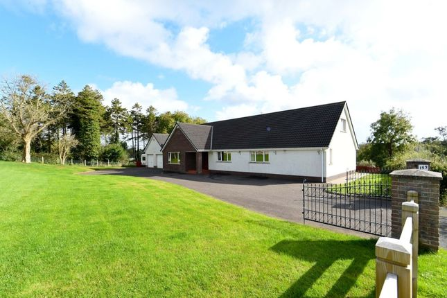 Thumbnail Bungalow for sale in Station Road, Saintfield, Ballynahinch