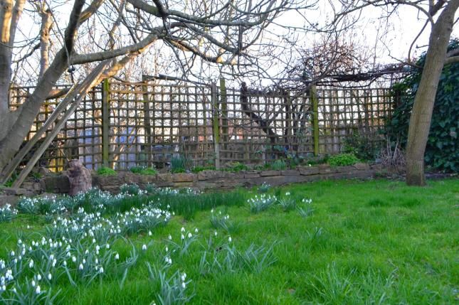Garden of Waller Avenue, Luton, Bedfordshire LU4