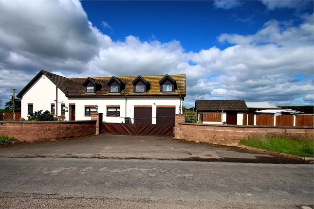 Thumbnail Detached house for sale in Gretna, Gretna, Dumfries And Galloway