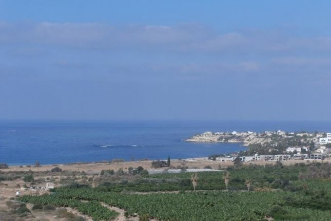 Thumbnail Land for sale in Kissonerga, Pafos, Cyprus