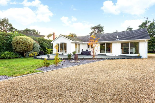 Thumbnail Detached bungalow for sale in Avon Avenue, Avon Castle, Ringwood, Hampshire