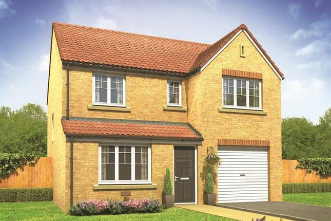 """Thumbnail Detached house for sale in """"The Longthorpe"""" at Picket Twenty, Andover"""