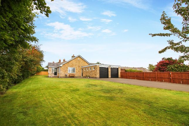 Thumbnail Detached bungalow for sale in Shadfen, Morpeth