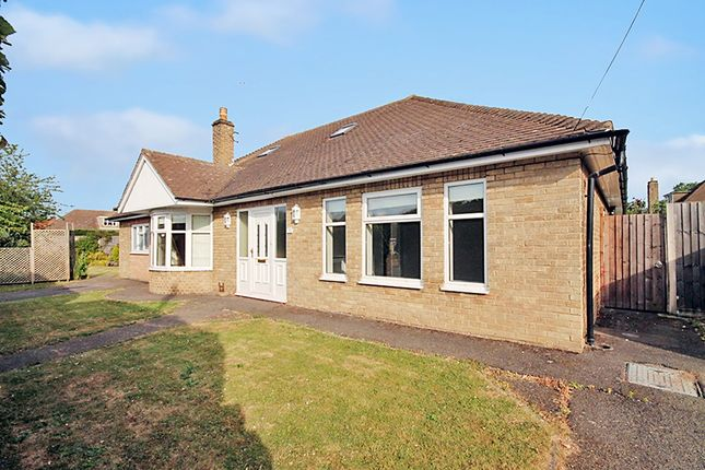 Thumbnail Detached house to rent in Latham Avenue, Peterborough