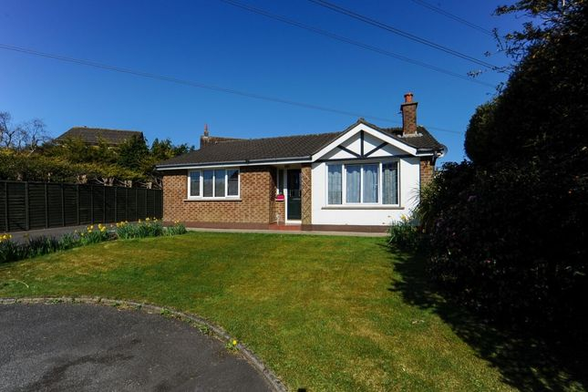 Thumbnail Bungalow for sale in Windermere Avenue, Belfast
