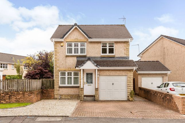 Thumbnail Detached house for sale in Ferry Court, Stirling