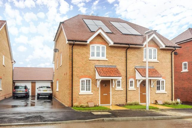 Thumbnail Semi-detached house to rent in Phillips Close, Wokingham