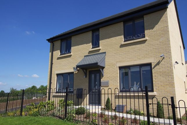 """Thumbnail Detached house for sale in """"The Chedworth"""" at Warminster Road, Frome"""