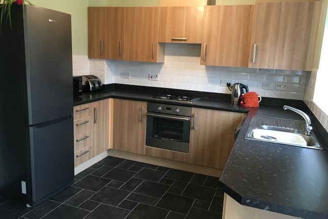 Thumbnail Semi-detached house to rent in The Lanes, Darlington, County Durham