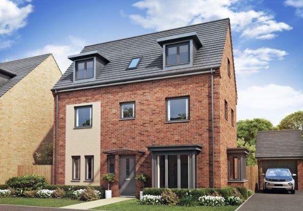 Thumbnail Detached house for sale in Plot 30 Hampton, Hampton Gardens, Hampton, Peterborough
