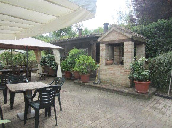 Picture No. 03 of Casa Antonella, Colmurano, Le Marche