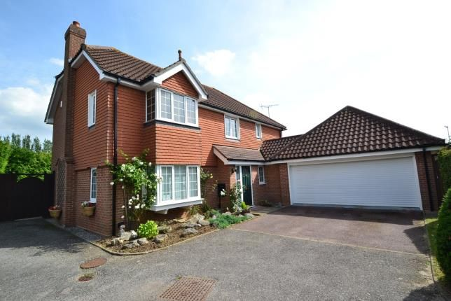 Thumbnail Detached house for sale in Sandon, Chelmsford, Essex