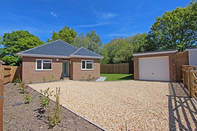 Thumbnail Detached bungalow for sale in Addison Road, Brockenhurst