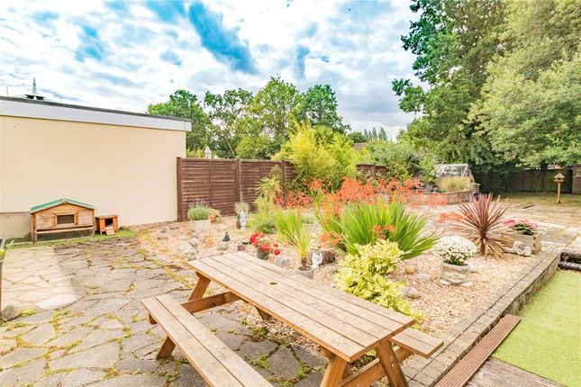 Garden of Frensham Road, Crowthorne, Berkshire RG45