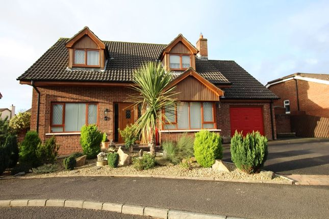 Thumbnail Detached house for sale in Craigs Road, Carrickfergus