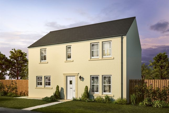 "Thumbnail Detached house for sale in ""The Montrose Melrose Gait"" at Stable Gardens, Galashiels"