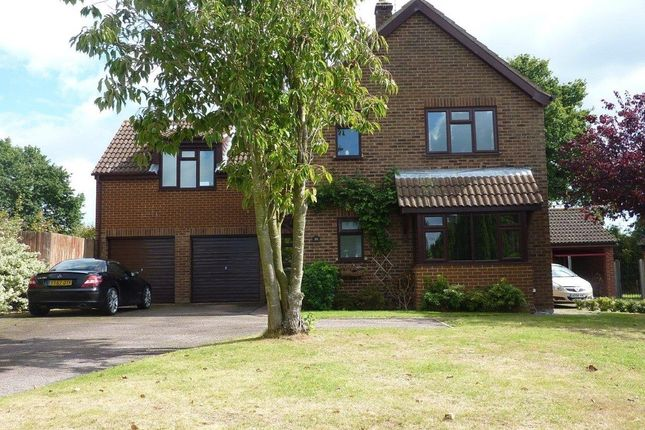 Thumbnail Detached house for sale in Symonds Avenue, Ormesby, Great Yarmouth