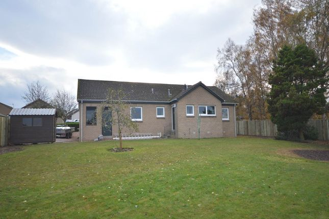 Thumbnail Detached house to rent in Birchview Place, Errol, Perth