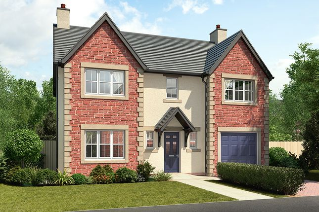 "Thumbnail Detached house for sale in ""Balmoral"" at Wilson Howe, Whitehaven"