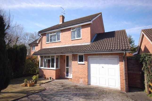 Thumbnail Detached house to rent in Sykes Drive, Staines, Middlesex