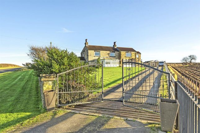 Thumbnail Detached house for sale in Milner Lane, Saxton, Tadcaster