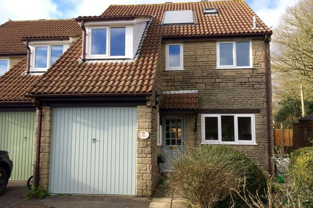 Thumbnail Semi-detached house to rent in Orchard Mead, Broadwindsor, Beaminster, Dorset