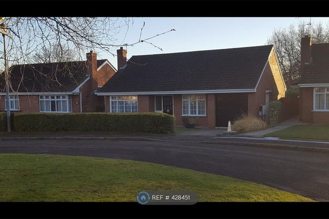 Thumbnail Bungalow to rent in Old Rectory Gardens, Scunthorpe
