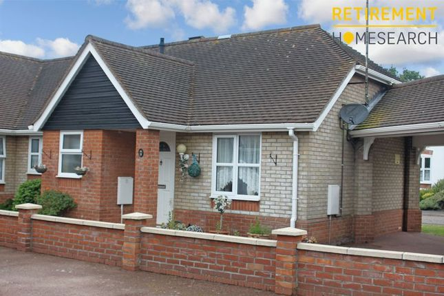 Thumbnail Terraced bungalow for sale in Meadow Close, Colchester