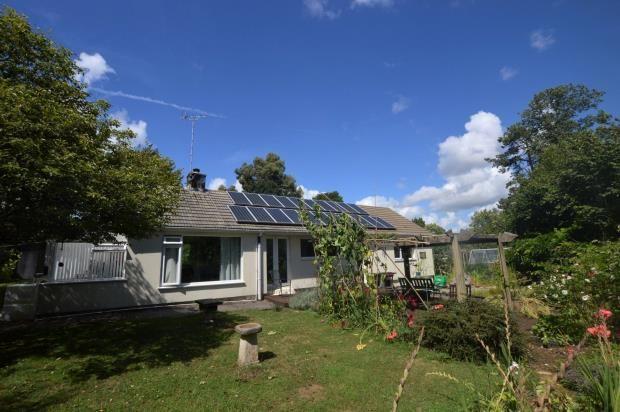 Thumbnail Detached bungalow for sale in Wallaford Road, Buckfastleigh, Devon