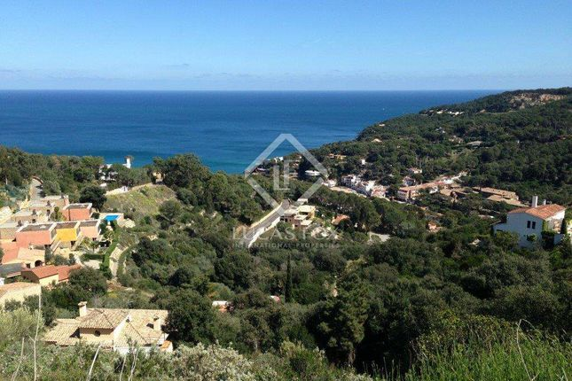 Thumbnail Land for sale in Spain, Costa Brava, Sa Riera / Sa Tuna, Lfcb1132