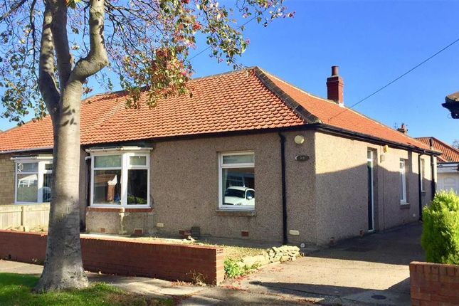 Thumbnail Semi-detached bungalow to rent in West Avenue, South Shields