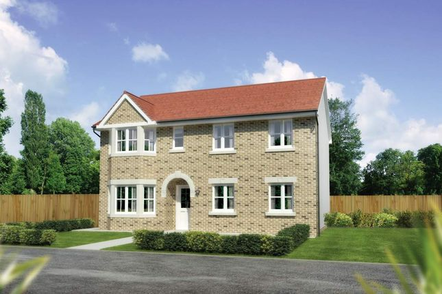 "Thumbnail Detached house for sale in ""Hollandswood"" at Cherrytree Gardens, Bishopton"