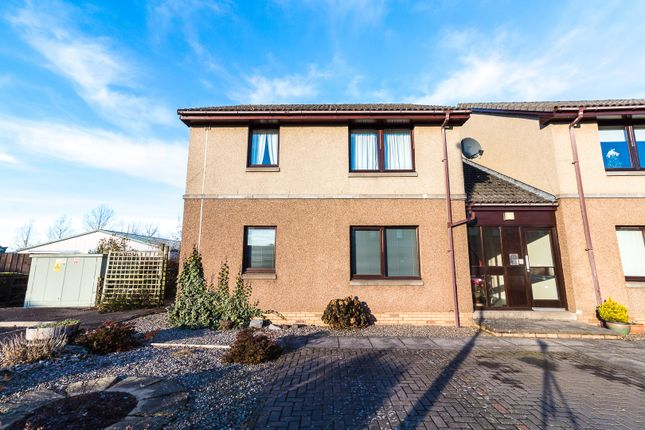Thumbnail Flat to rent in Prosen Place, Forfar