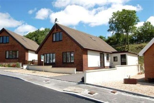 Thumbnail Bungalow to rent in Nant Yr Ynys, Llanpumsaint, Carmarthen