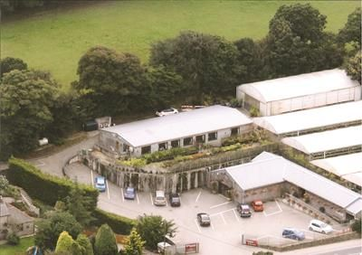 Thumbnail Commercial property for sale in Penventon Garden Centre & Nurseries, Lanner, Redruth