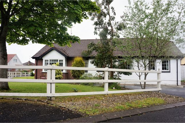 Thumbnail Detached bungalow for sale in Cranlee Park, Culmore