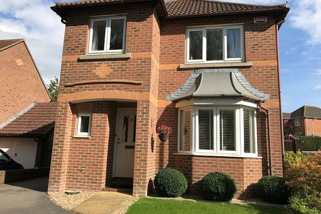 Thumbnail Detached house to rent in Strouts Road, Ashford