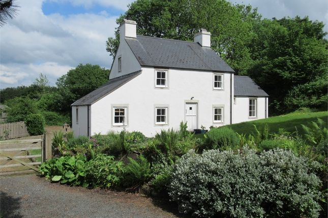 Thumbnail Detached house for sale in Cynefin, College Square, Newport, Pembrokeshire