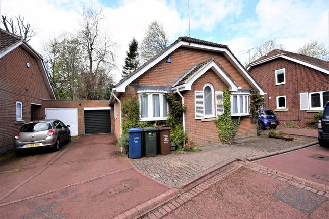 3 bed detached bungalow to rent in Richmond Mews, Gosorth, Newcastle Upon Tyne NE3