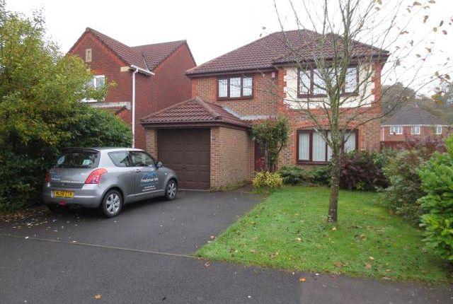Thumbnail Property to rent in Coed Camlas, New Inn, Pontypool