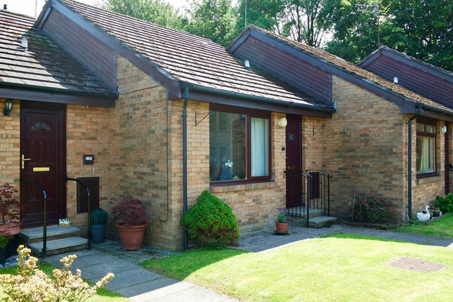 Thumbnail Bungalow for sale in Springbank Gardens, Falkirk