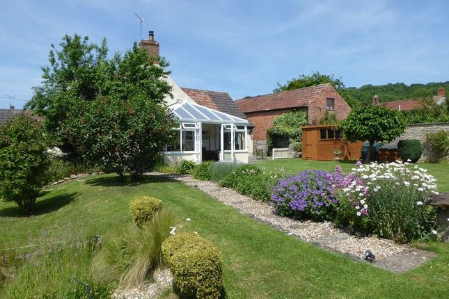 Thumbnail Detached house for sale in The Cottage, Church Path, Langport