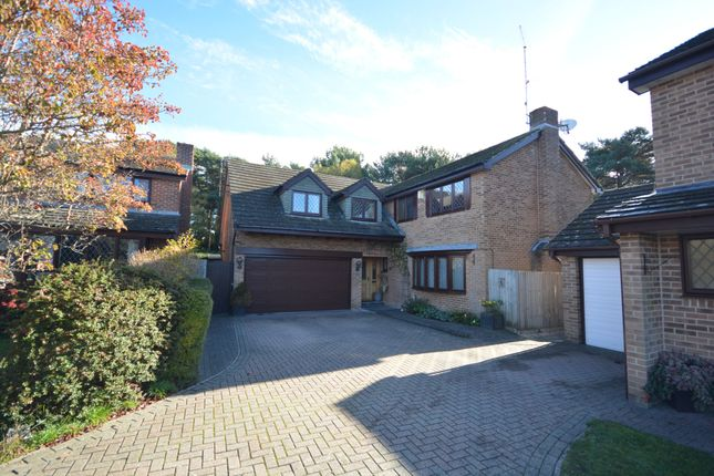 Thumbnail Detached house for sale in Stourpaine Road, West Canford Heath, Poole