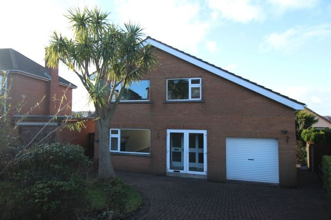Thumbnail Detached house to rent in Cleland Park Central, Bangor