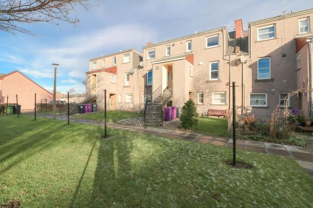 Thumbnail Flat to rent in Russell Square, Arbroath