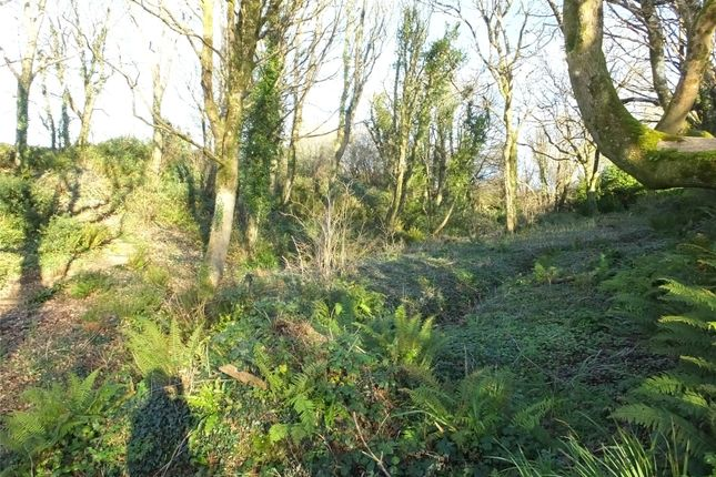 Picture No. 20 of Habititabities, Narberth Road, Tenby, Pembrokeshire SA70