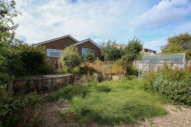 Rear Of Property of Canterbury Road, Brotton, Saltburn-By-The-Sea TS12